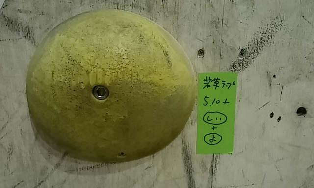 春だから仕方ない/江戸川橋T-WALL